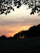 Sonnenuntergang 2 in Holperdorp, westlicher Teutoburger Wald