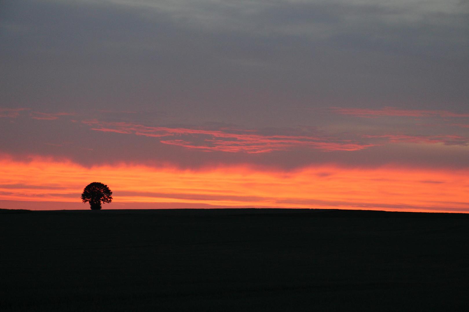 Sonnenuntergang (2von2)
