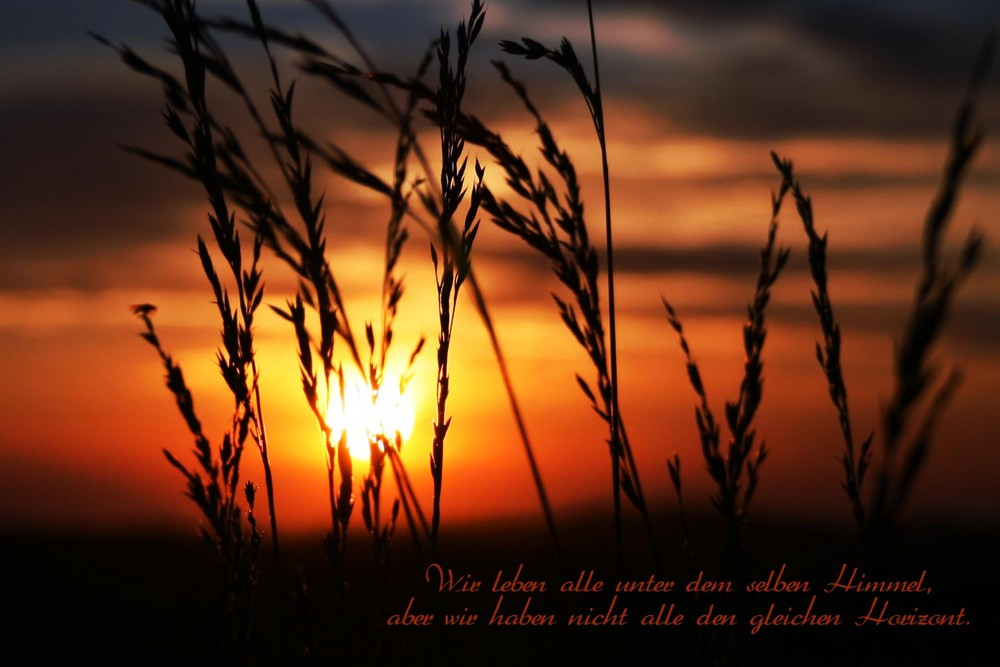 ~ Sonnenuntergang ~