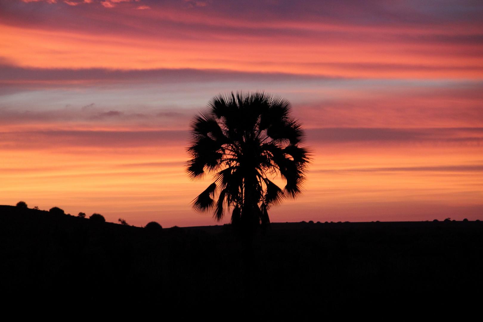 Sonnenuntergang | Africa