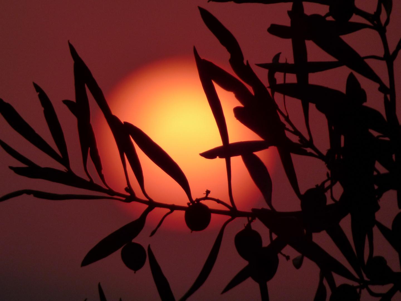 Sonnenuntergang Algarve