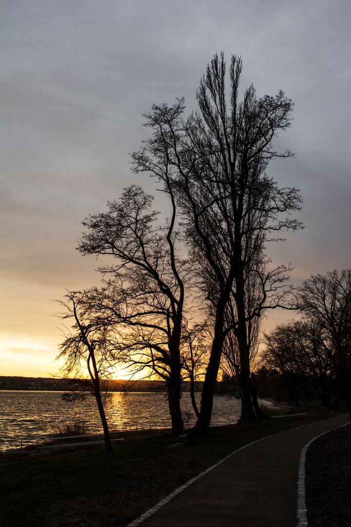 Sonnenuntergang am 4. Advent