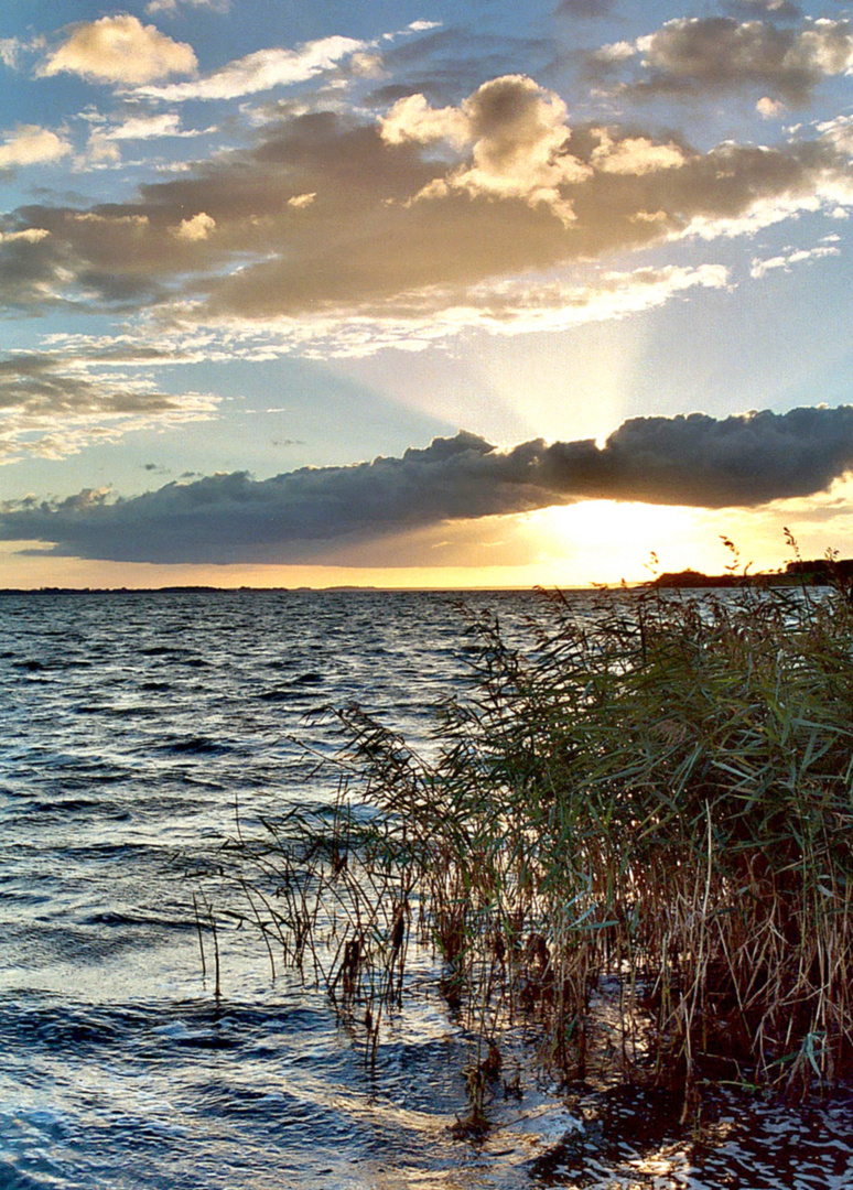 Sonnenuntergang am Achterwasser (Usedom)