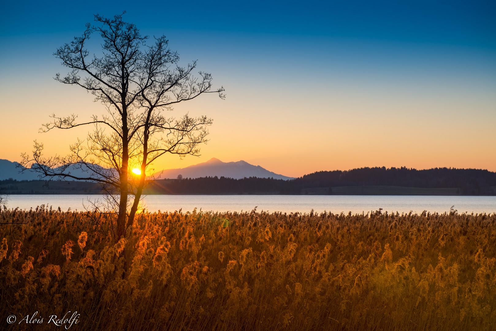 Sonnenuntergang am Bannwaldsee