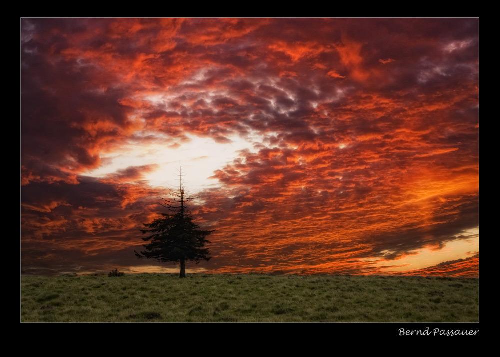 Sonnenuntergang am Belchen