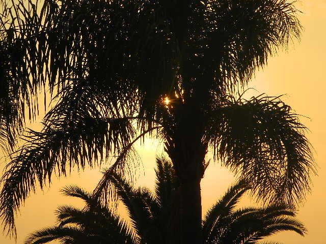 Sonnenuntergang am Capo Vatikano Kalabrien2