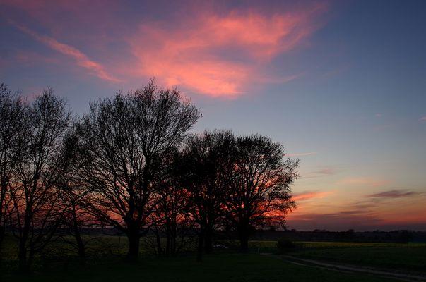 Sonnenuntergang am Egelsberg