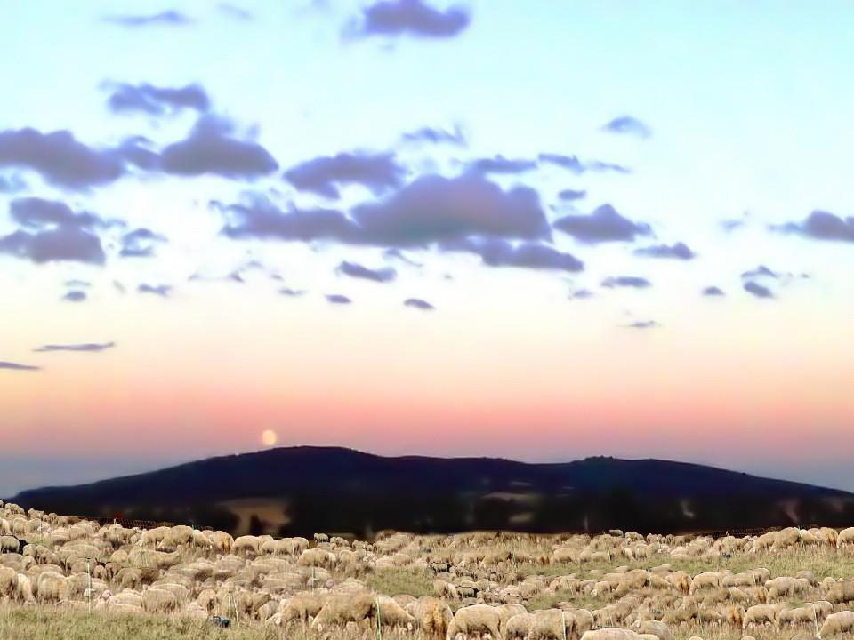 Sonnenuntergang am Fuss der Asse