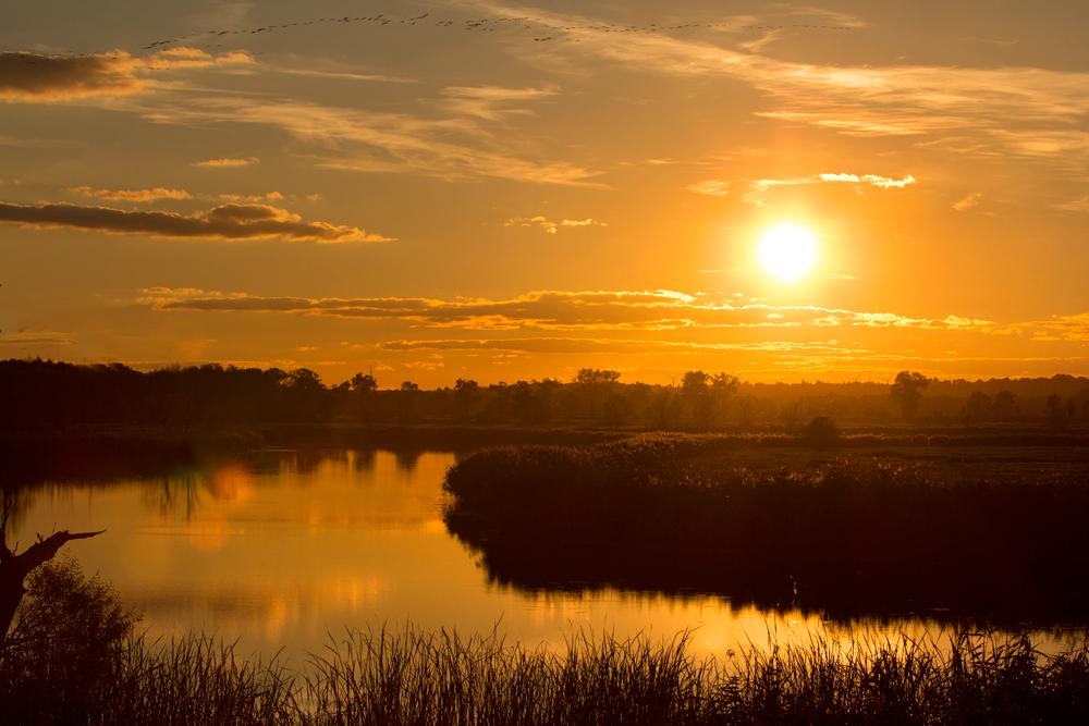 Sonnenuntergang am Gartzer Deich
