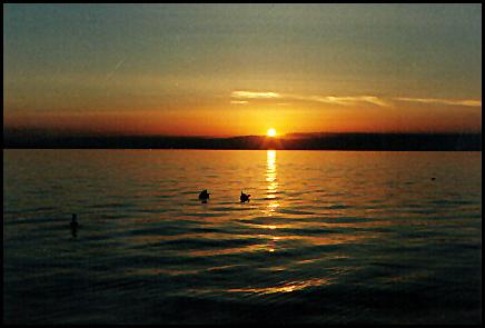 Sonnenuntergang am Genfer See