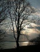 Sonnenuntergang am Kölpinsee 2