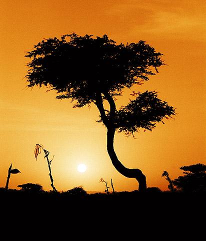 Sonnenuntergang am Lake Langano/Äthiopien