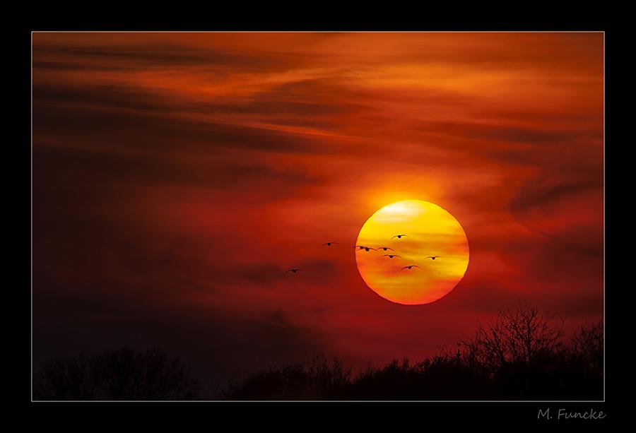 Sonnenuntergang am Lippesee