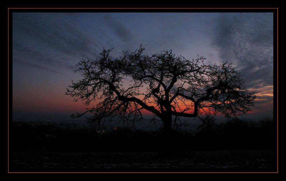 Sonnenuntergang am Maiwieserberg