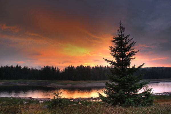 Sonnenuntergang am Oderteich