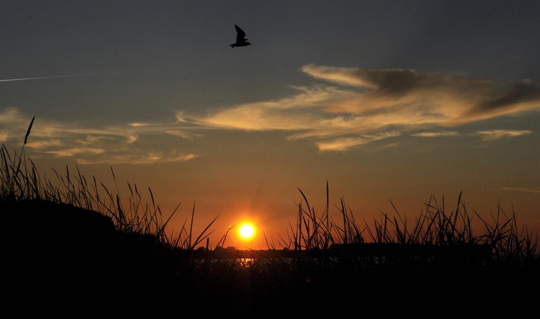 Sonnenuntergang am Ostseestrand bei Zierow