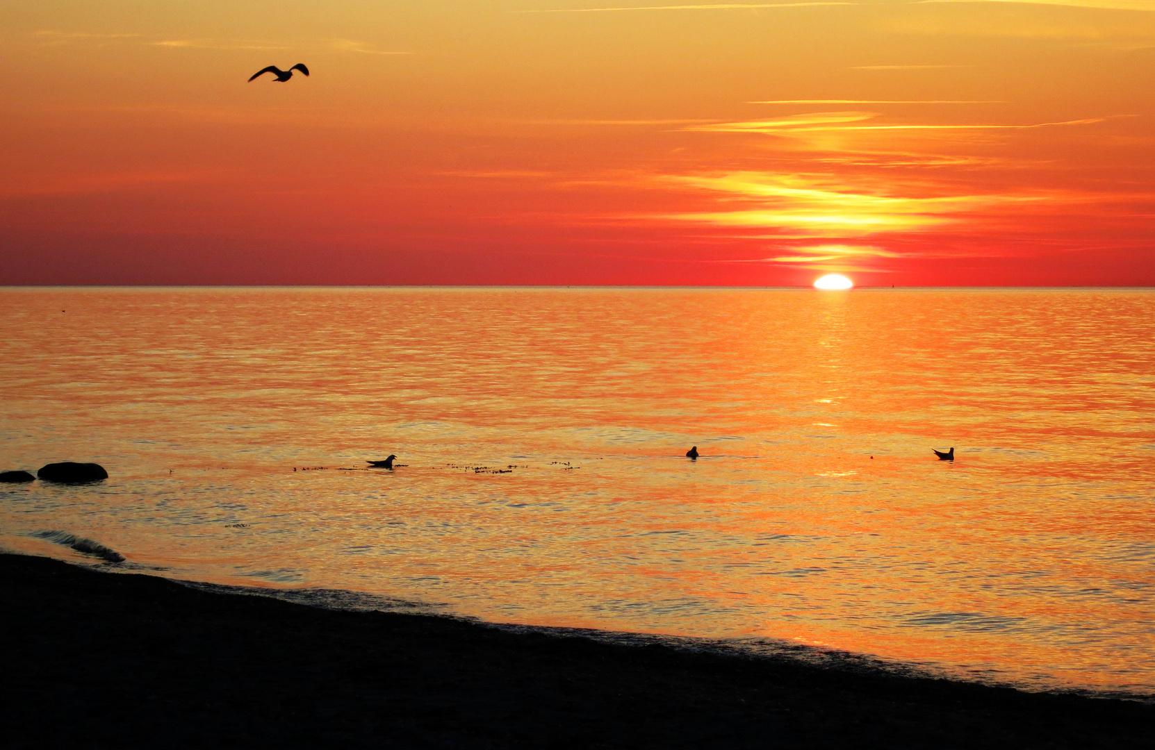 Sonnenuntergang am Ostseestrand von Heiligenhafen