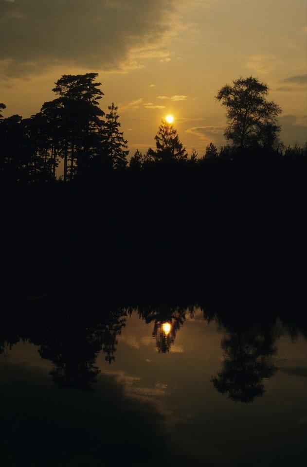 Sonnenuntergang am Rande der Lüneburger Heide