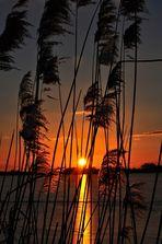 Sonnenuntergang am Rangsdorfer See....