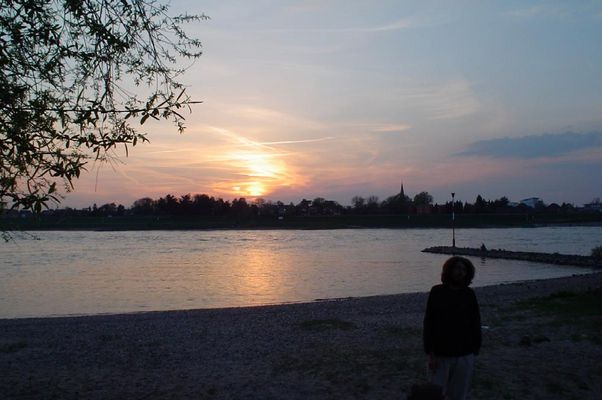 Sonnenuntergang am Rhein 2