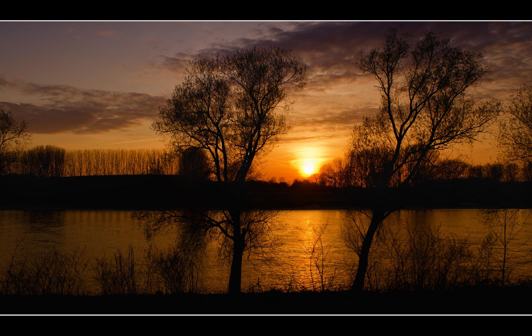 Sonnenuntergang am Rhein in Monheim