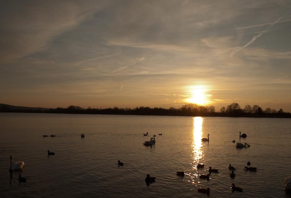 Sonnenuntergang am Salzgitter-See