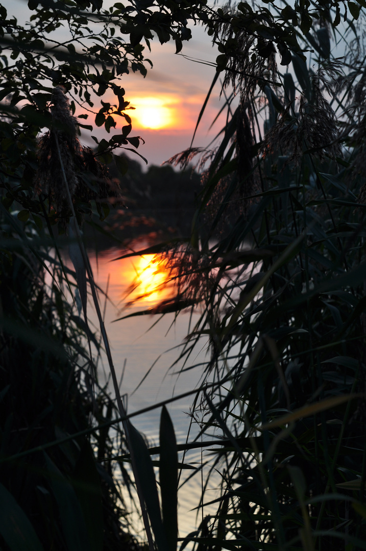 Sonnenuntergang am See in Langenhagen Teil 2