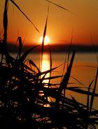 Sonnenuntergang am Sempachersee