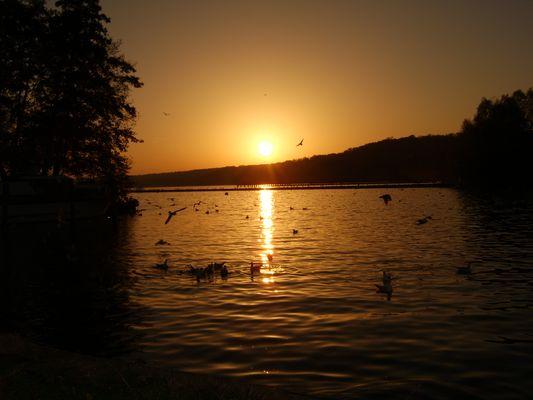 Sonnenuntergang am Tollensesee