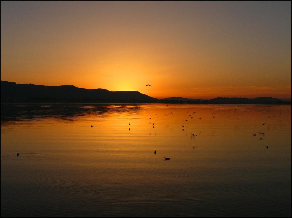 Sonnenuntergang am Untersee-2
