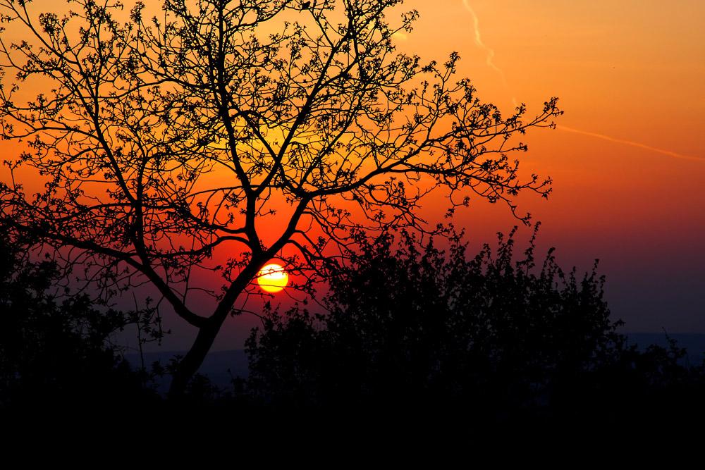 Sonnenuntergang am Waschberg