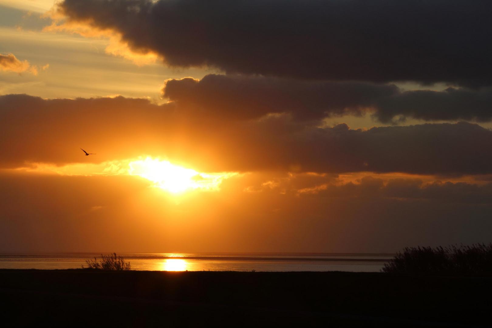 Sonnenuntergang am Wattenmeer!