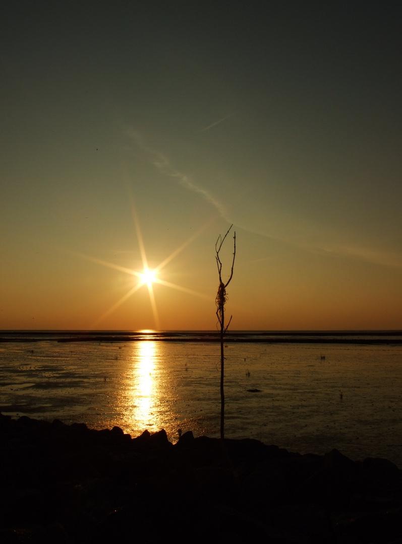 Sonnenuntergang am Wattenmeer...