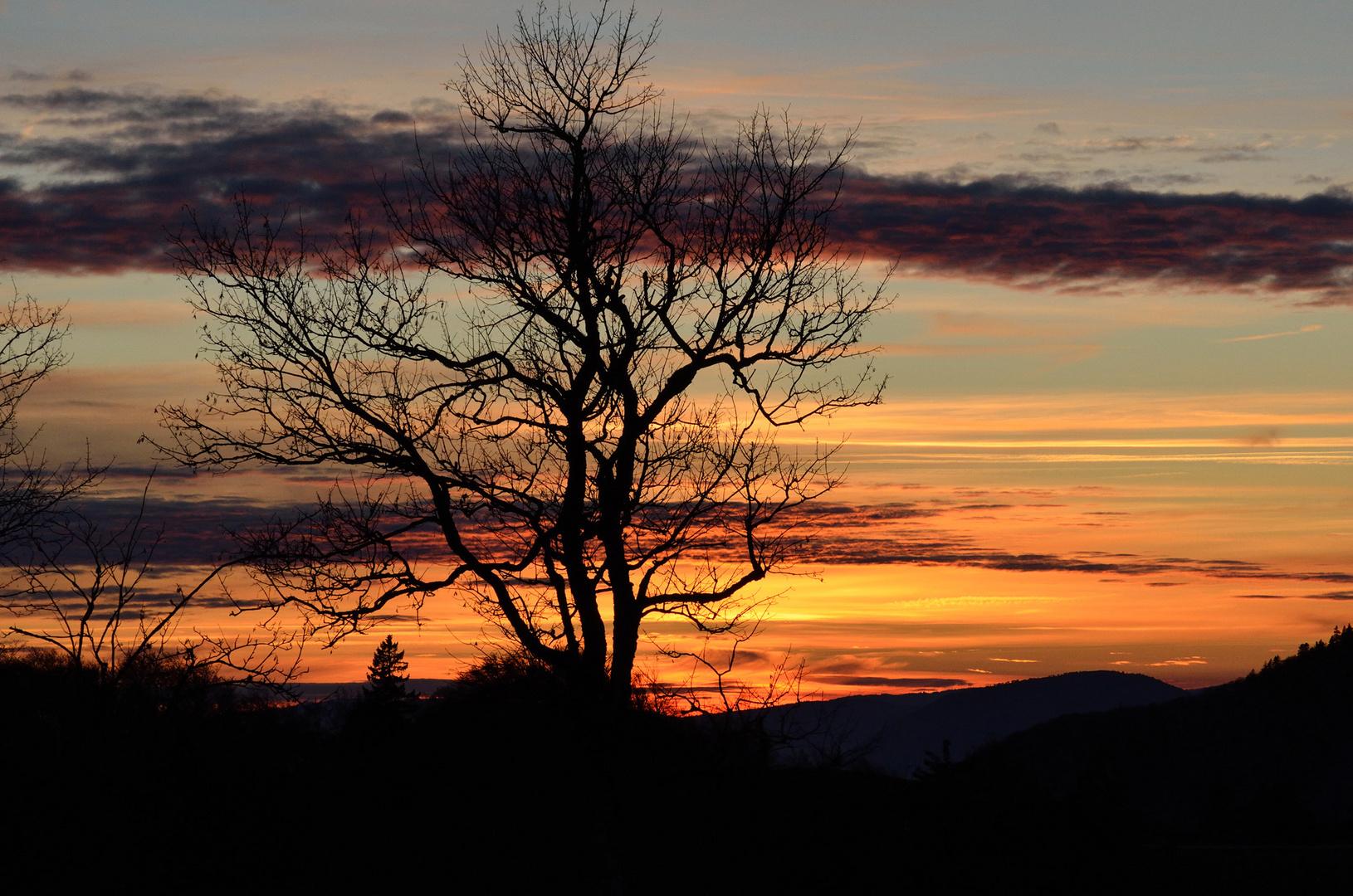 Sonnenuntergang am Weissenstein # 1