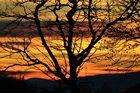 Sonnenuntergang am Weissenstein # 4