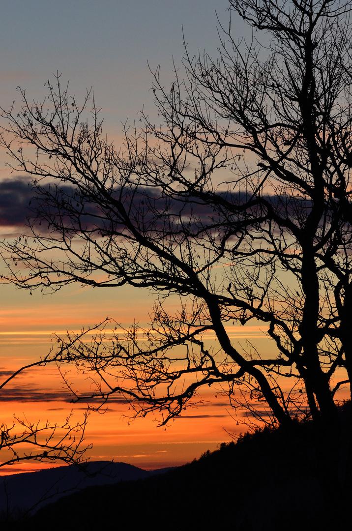 Sonnenuntergang am Weissenstein # 5