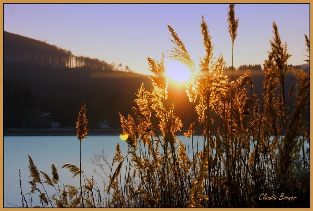 Sonnenuntergang am Wienerwaldsee
