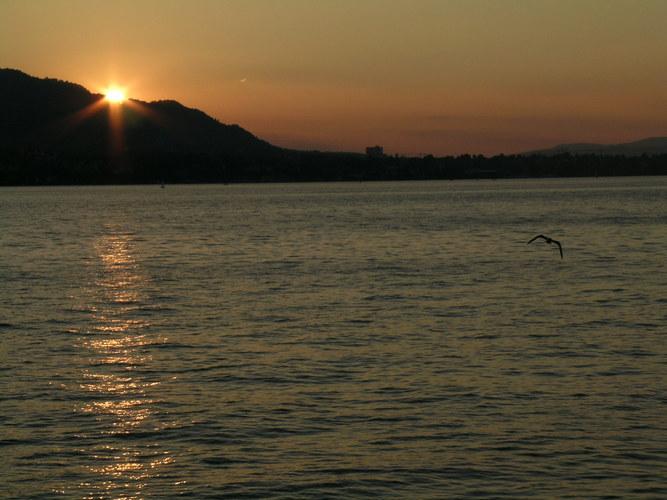 Sonnenuntergang am Zürichsee