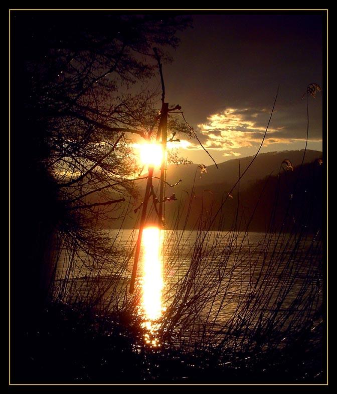 Sonnenuntergang an der Aare