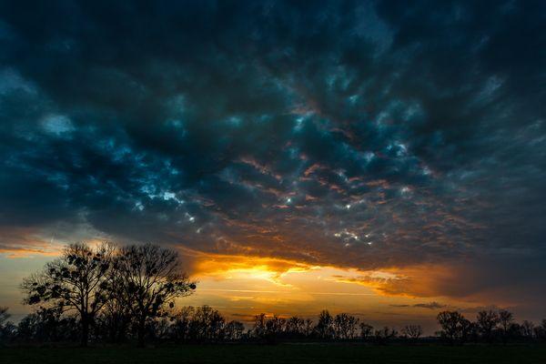 Sonnenuntergang an der Mittelelbe