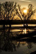 ~~~~~~~~~~~~~~~~Sonnenuntergang an der Mulde~~~~~~~~~~~~~~~~~~