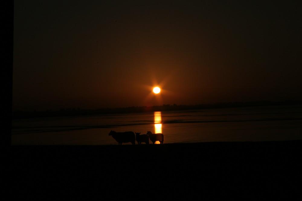 Sonnenuntergang an der Nordsee 1