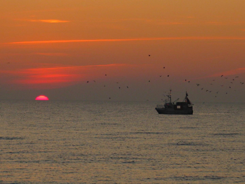 Sonnenuntergang auf dem Dars/Ostsee