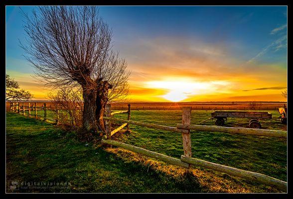 Sonnenuntergang auf dem Darß /2.