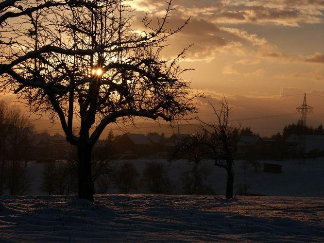 Sonnenuntergang auf dem Dinkelberg
