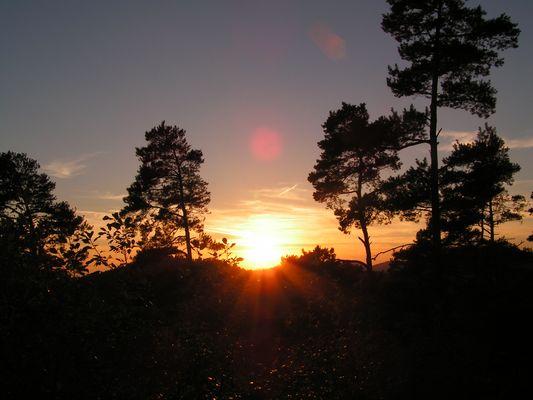 Sonnenuntergang auf dem Theisenkopf / Schwarzwald