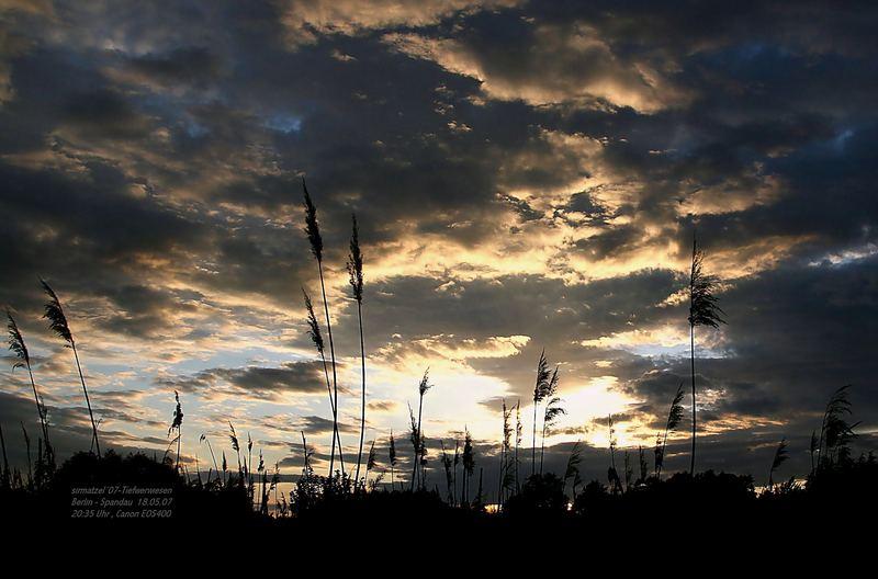 Sonnenuntergang auf den Tiefwerderwiesen 18.05.07 , 20:35 Berlin-Spandau