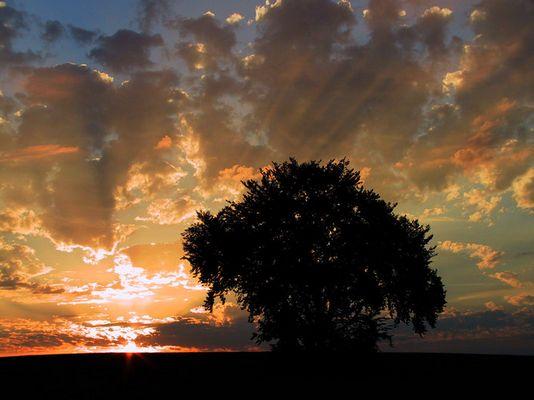 Sonnenuntergang auf der Alb