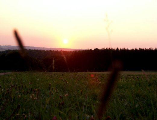 Sonnenuntergang auf der Heide