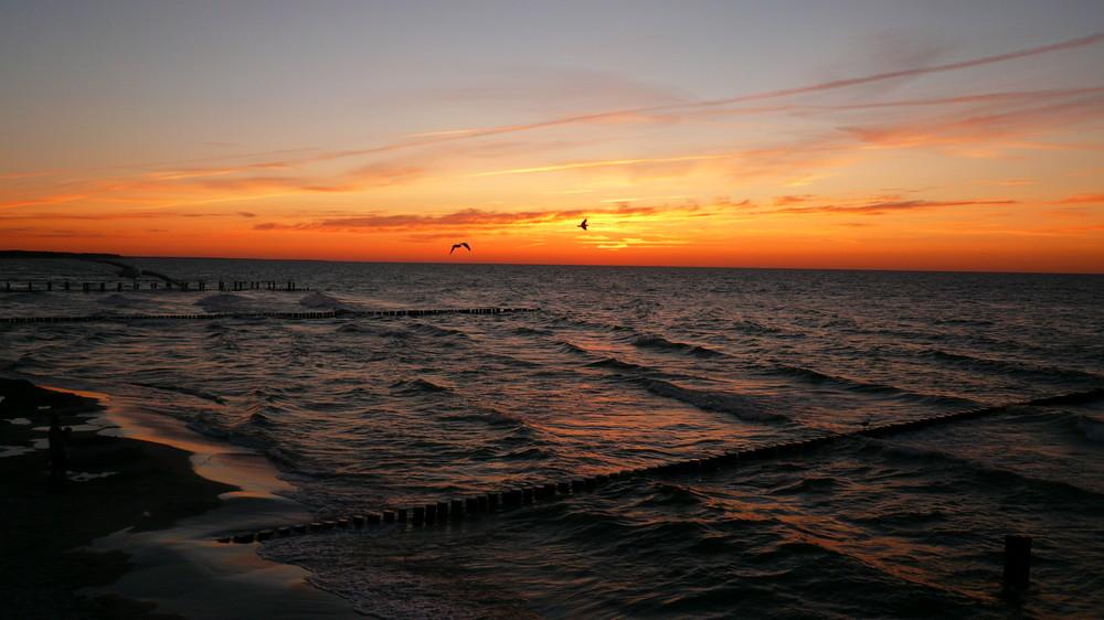 Sonnenuntergang auf der Insel Zingst